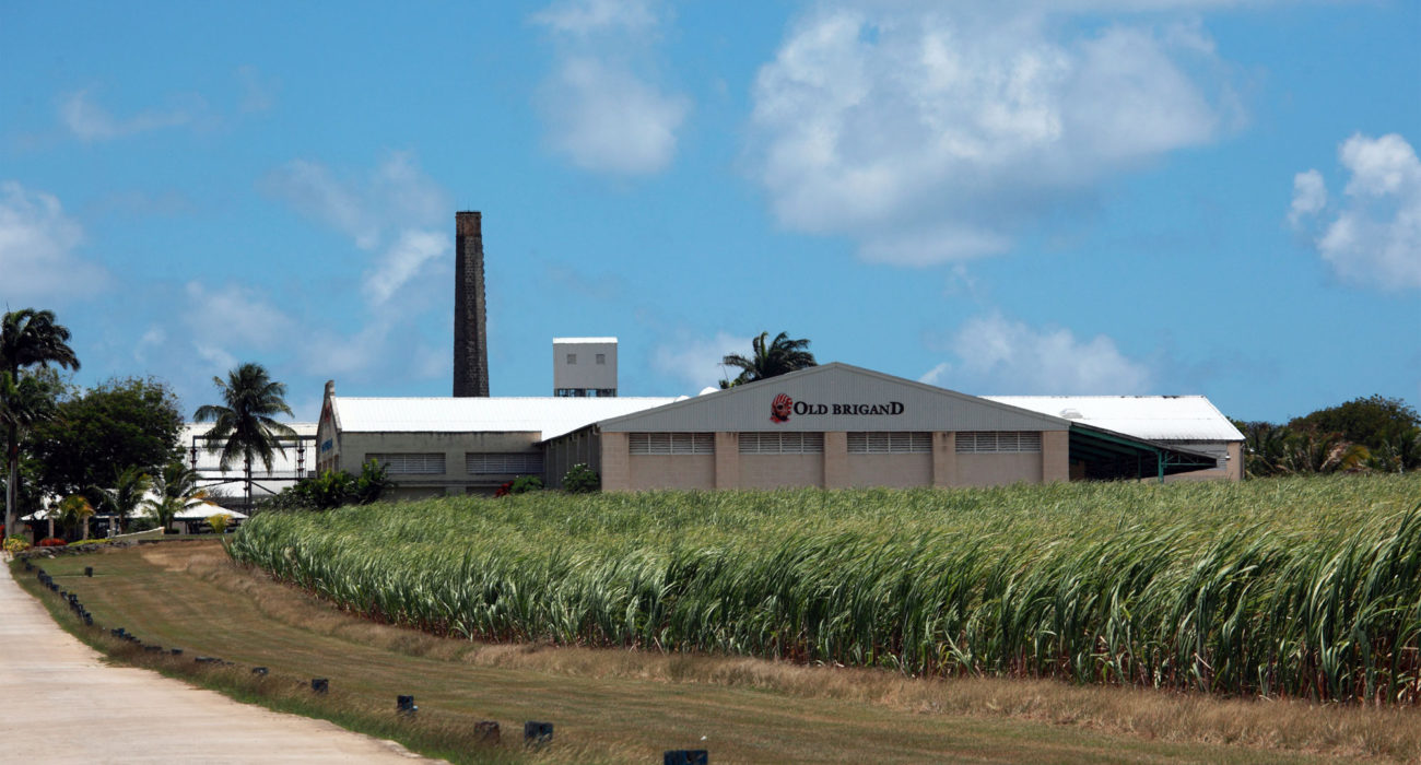 Foursquare distillery, emblazoned with the Old Brigand logo, Barbados.