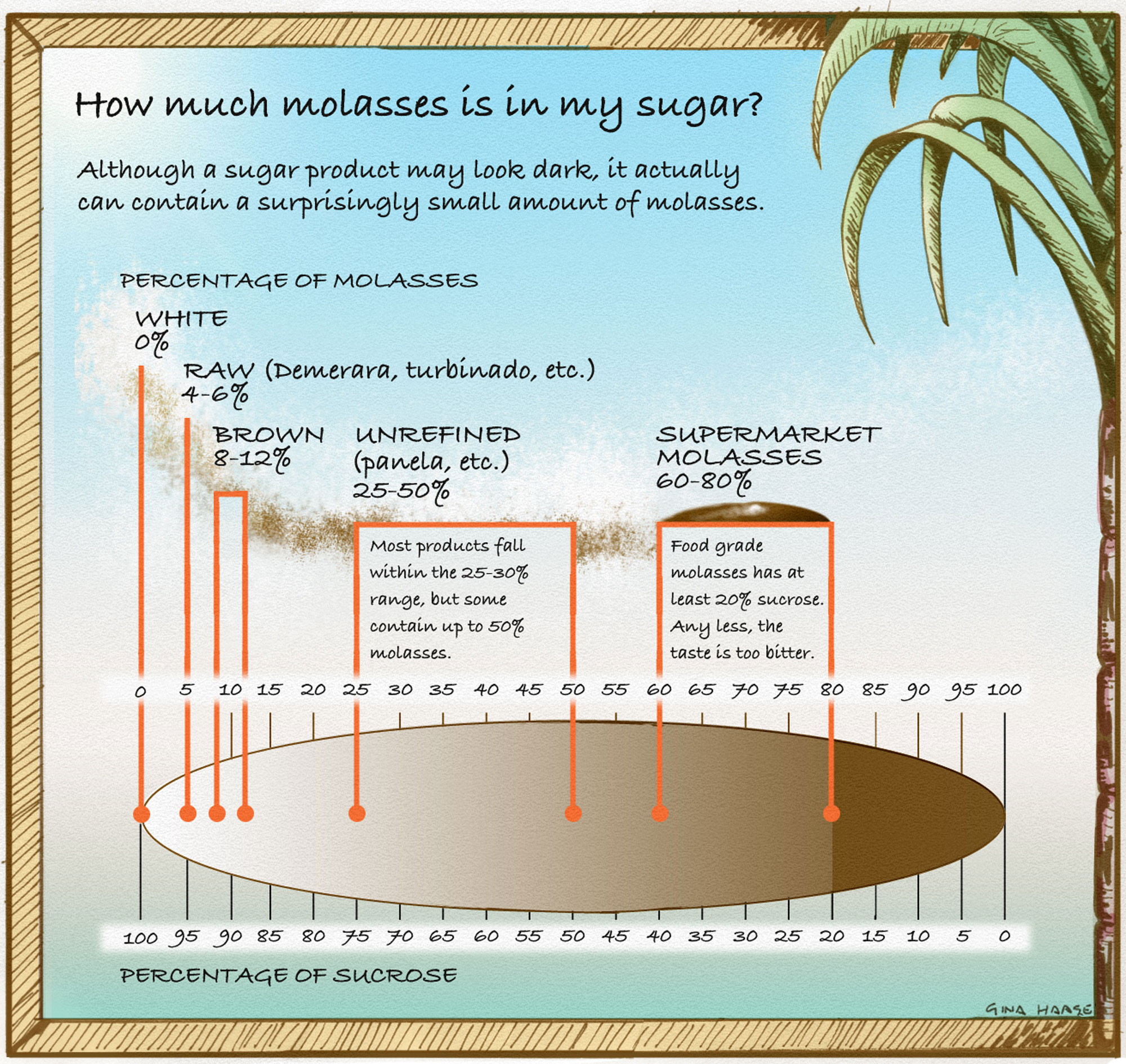How much molasses is in my sugar? Illustration by Gina Haase.
