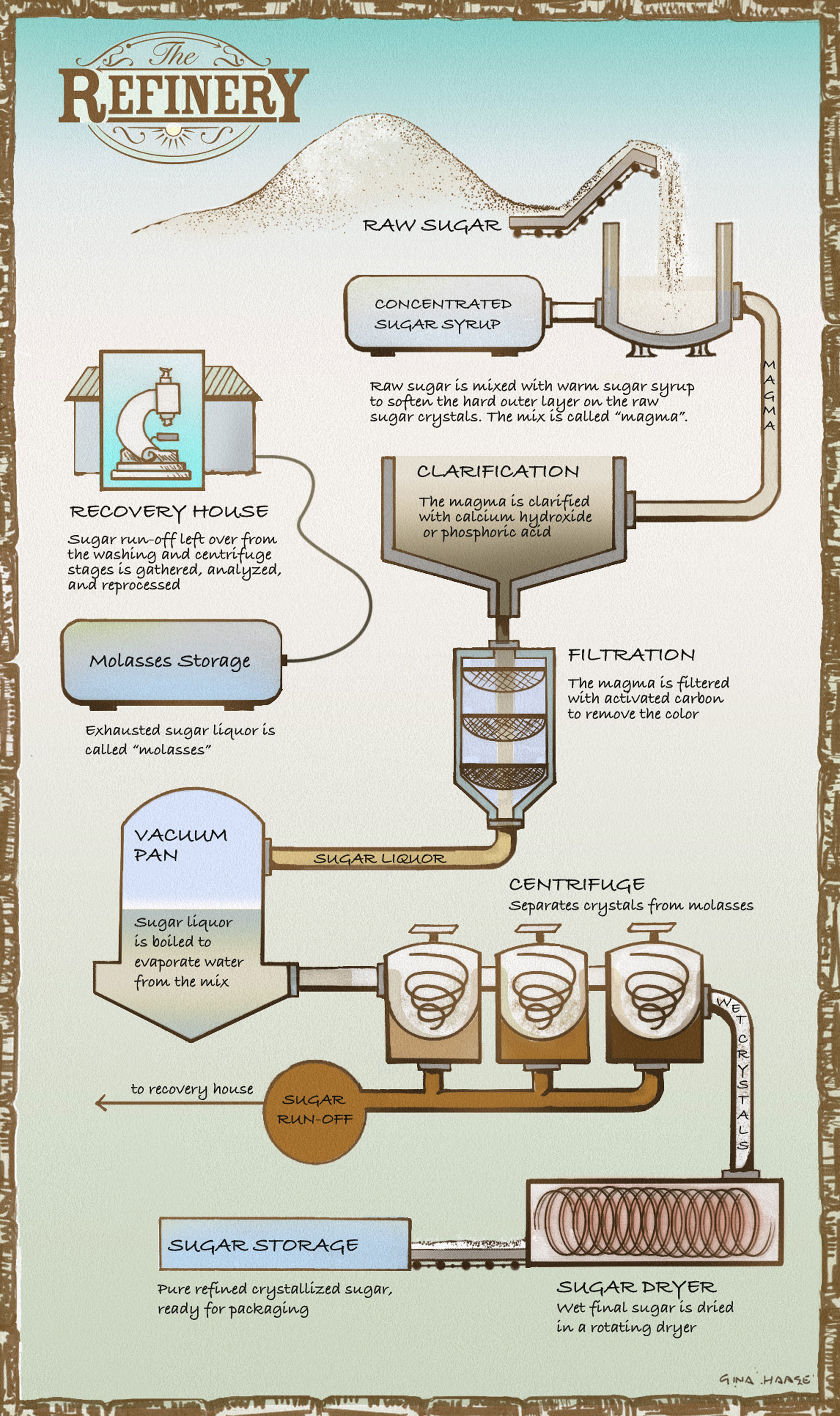 The process of refining sugar. Illustration by Gina Haase.