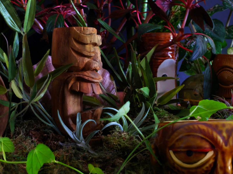 The Tiki Twilight Garden